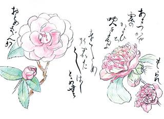 190220_乙女山茶花・桃割れ.jpg