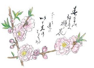 190312_桃.jpg