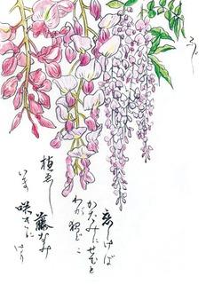190522_ふじ.jpg