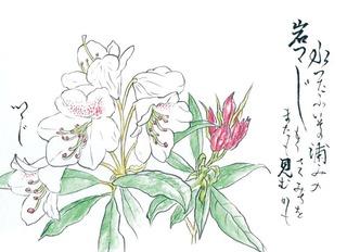190528_つつじ.jpg