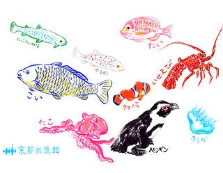 京都水族館.jpg