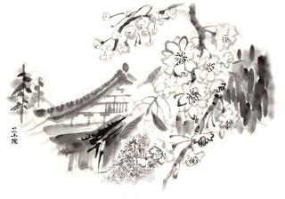 大原三千院と桜.jpg